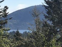 Okanagan Lake View Lot on 0.26 Acres